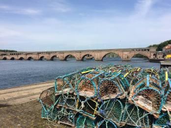 Mermen fishing berwick upon tweed