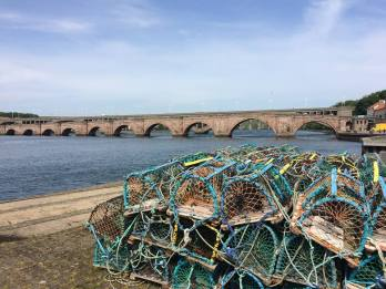 Mermen fishing berwick upon tweed